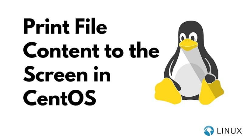 Print File Content to the Screen in CentOS